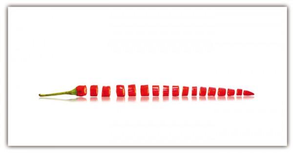 Spritzschutz Pepperonischeiben 100x50