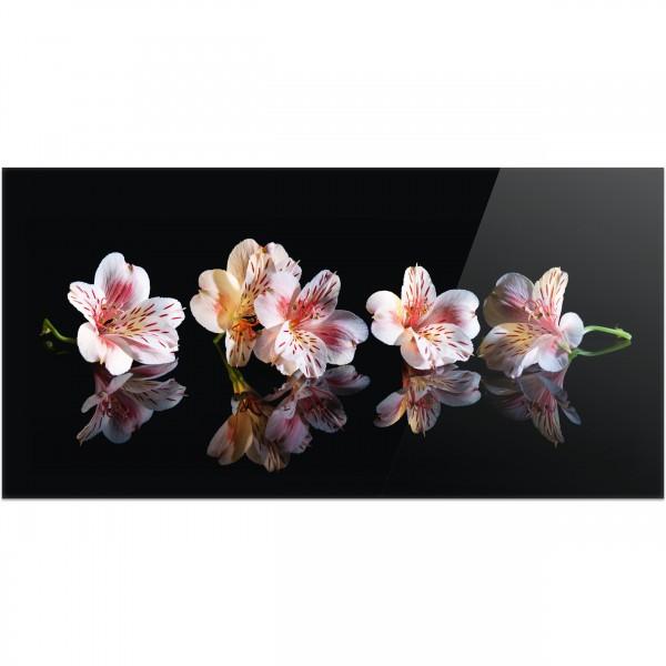 """Küchenrückwand """"Blütenwunder"""" - Spritzschutz mit Motiv aus Aluverbund"""